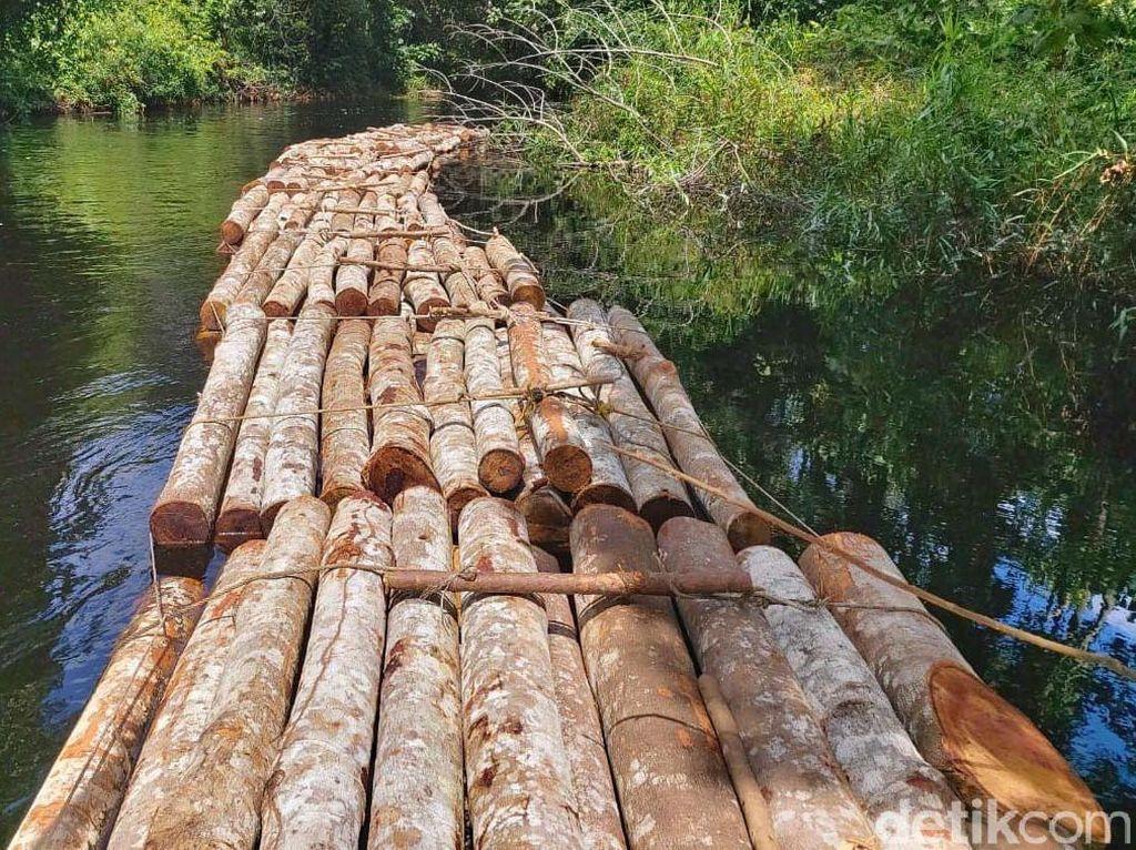 Polisi Buru Pelaku Illegal Logging di Siak Riau