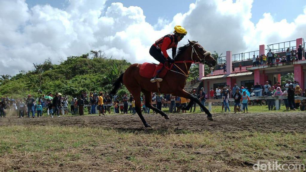 Liburan Seru di Pangandaran, Wisata Pantai Sambil Lihat Kuda Pacu