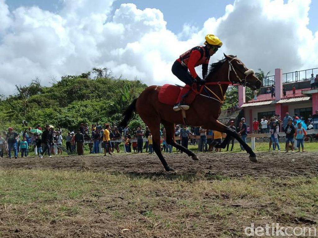 Berwisata ke Pantai Madasari Sembari Melihat Aksi Kuda Pacu