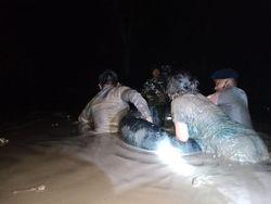 Video Ganasnya Terjangan Banjir Bercampur Lumpur di Luwu Utara