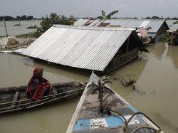 Banjir di Assam India Hampir Menyentuh Atap Rumah
