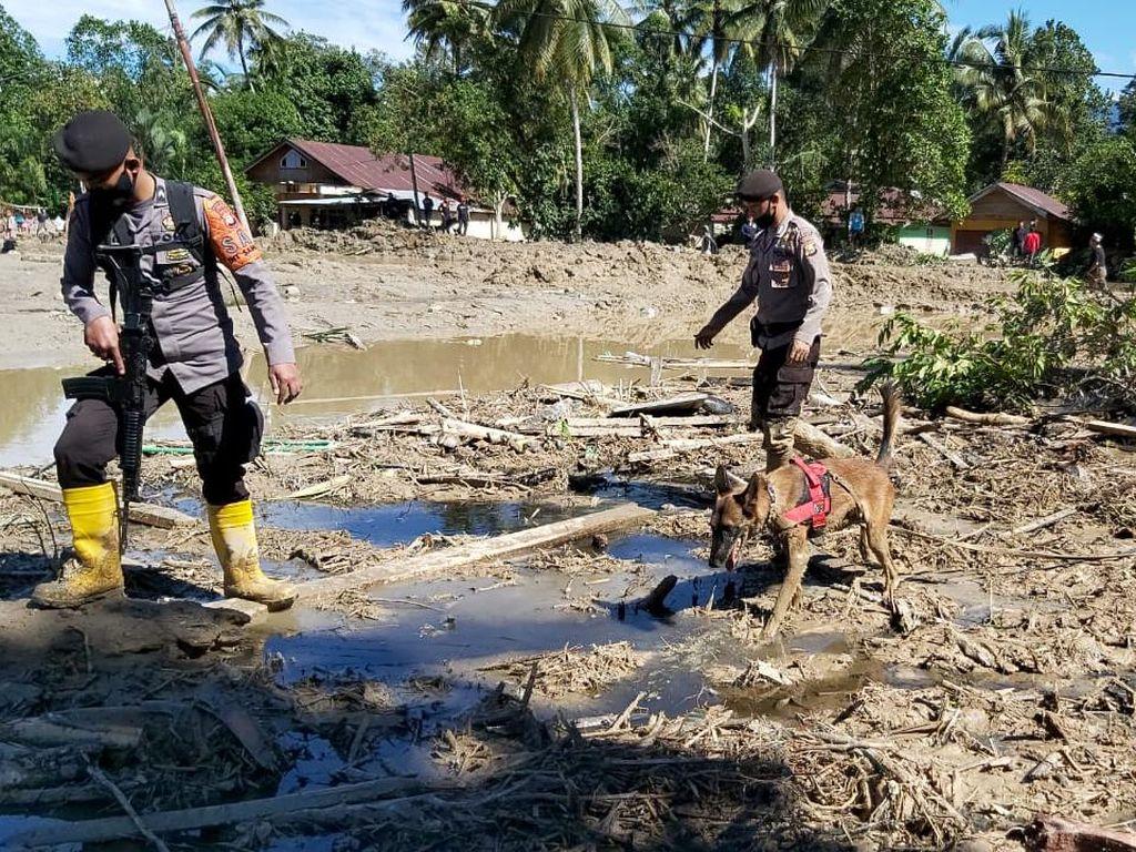Polisi Kerahkan Anjing Pelacak Bantu Cari Korban Banjir di Luwu Utara