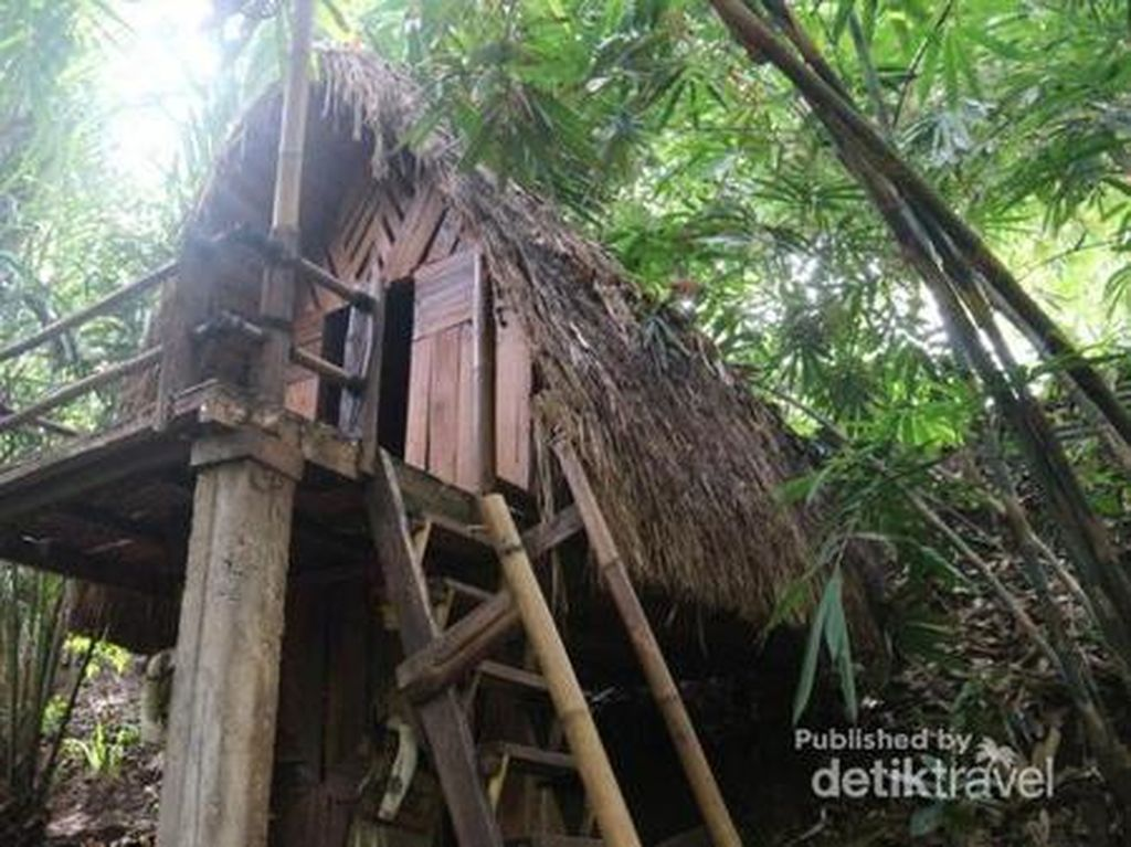 Banyuwangi Punya Kampung Primitif, Seperti di Pedalaman