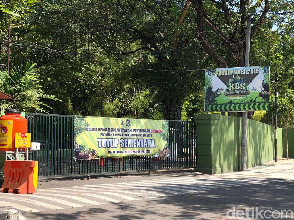 Kebun Binatang Surabaya Perpanjang Penutupan Sampai 26 Juli