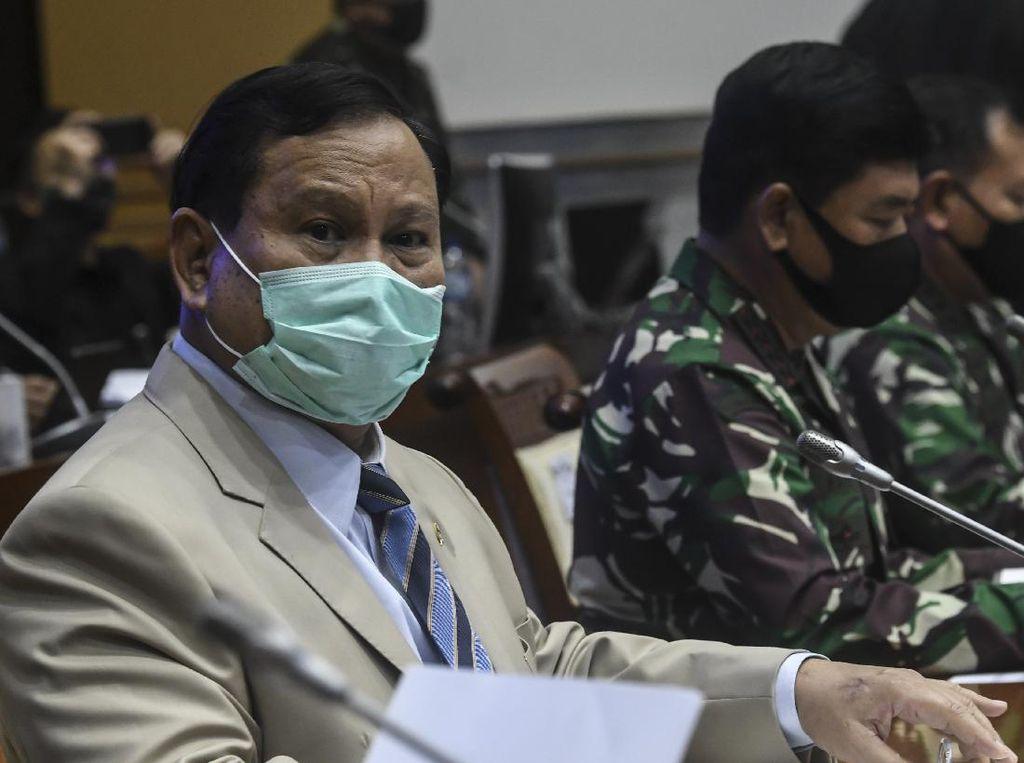 Garap Singkong di Proyek Lumbung Pangan, Prabowo: Hanya Backup