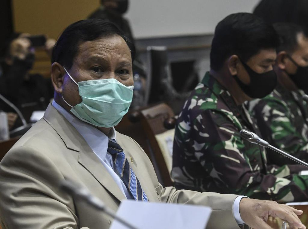 Mengulas Proyek Lumbung Pangan yang Dikomandoi Prabowo