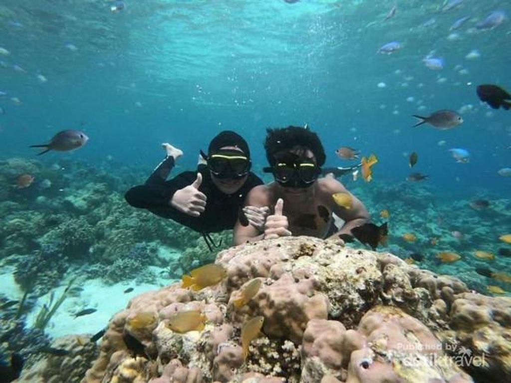 Beginilah Secuil Surga Bawah Laut Yapen Papua