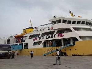Bantu Pemda Dumai, Kapal Kemenhub Bantu Angkut 550 Ekor Sapi dari NTT