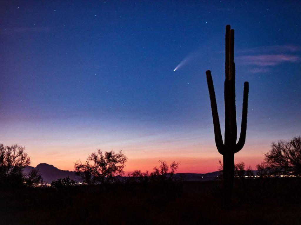 Penampakan Komet Neowise Dirusak Satelit SpaceX