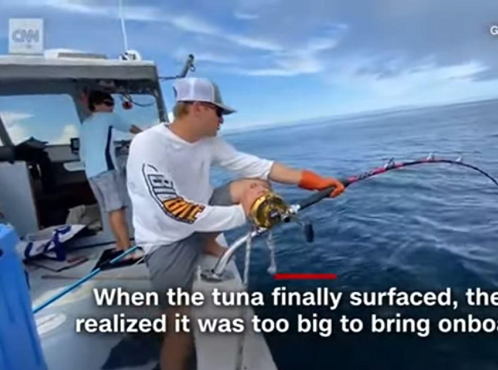 Nelayan Ini Butuh 7 Jam Untuk Menarik Ikan Tuna Seberat 300 Kilogram