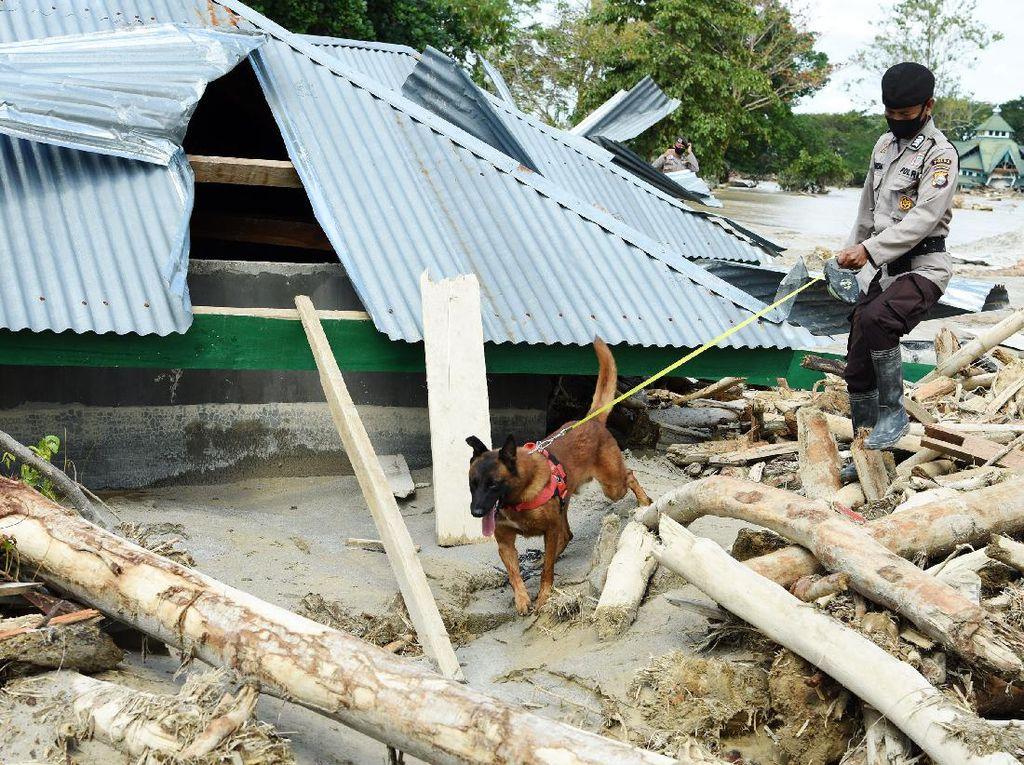 Polisi Selidiki Penyebab Banjir Bandang di Luwu Utara