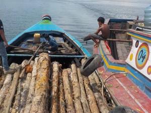 KLHK Tangkap 3 Pelaku Illegal Logging di Kawasan Suaka Margasatwa Sumsel