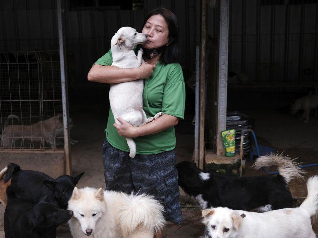 Ini Susana Somali, Si Pelindung Ribuan Anjing Terlantar di Ibu Kota