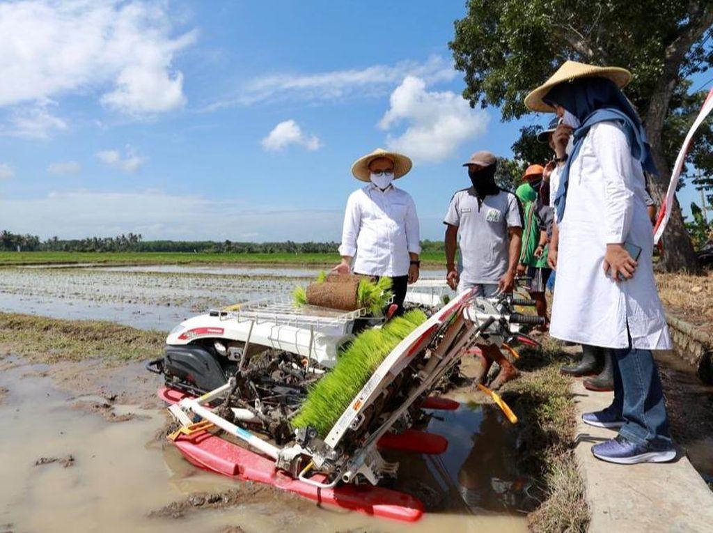 Bupati Anas Dorong Petani Manfaatkan Alsintan untuk Optimalkan Hasil Pertanian
