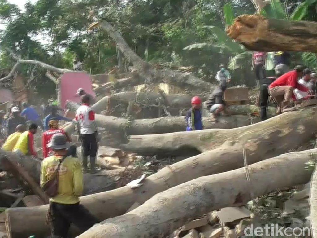 5 Rumah di Subang Tertimpa Pohon Tumbang, 1 Tewas 10 Luka