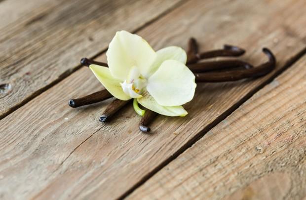Koleksi foto aroma vanila yang jadi parfum favorit wanita.