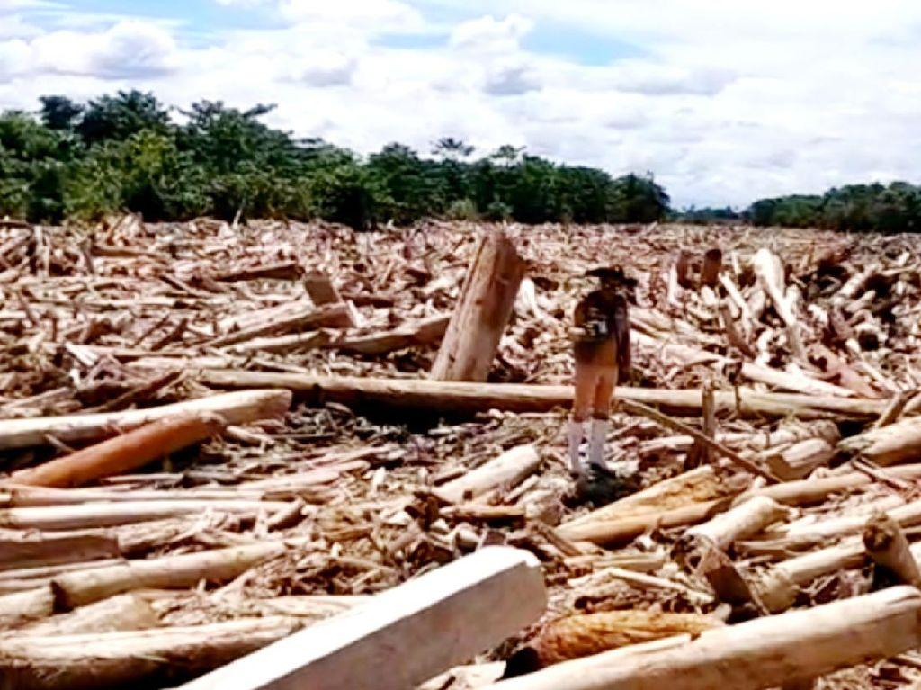 Tim SAR Cari 9 Warga yang Hilang Akibat Banjir di Luwu Utara