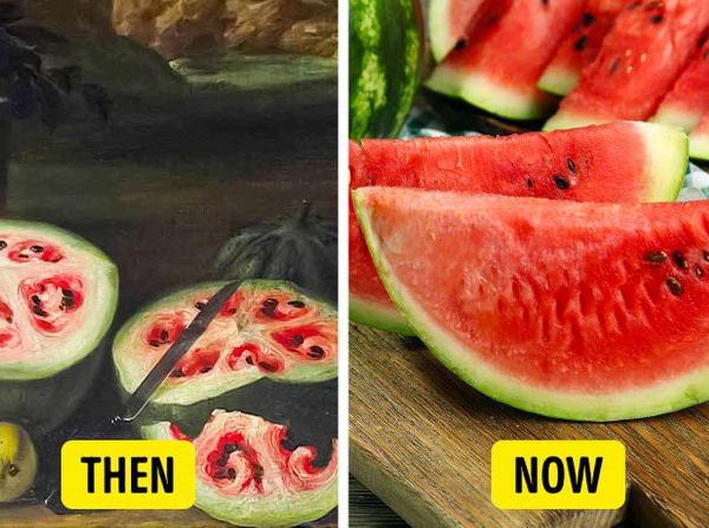 10 Foto Ini Buktikan Terung hingga Semangka Dulu Tak Seperti Sekarang