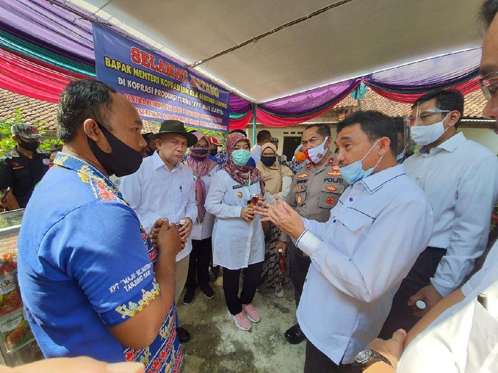 LPDB Berpotensi Salurkan Dana Bergulir ke Koperasi Ternak di Lampung