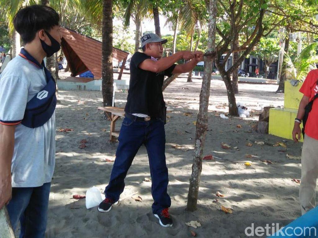 Petugas Cabut 5 Kg Paku dari Pepohonan Tepi Pantai Pangandaran