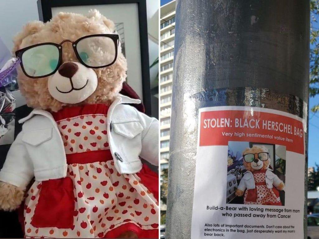 Kisah Sedih di Balik Hilangnya Boneka Beruang yang Viral, Artis Pun Ikut Cari