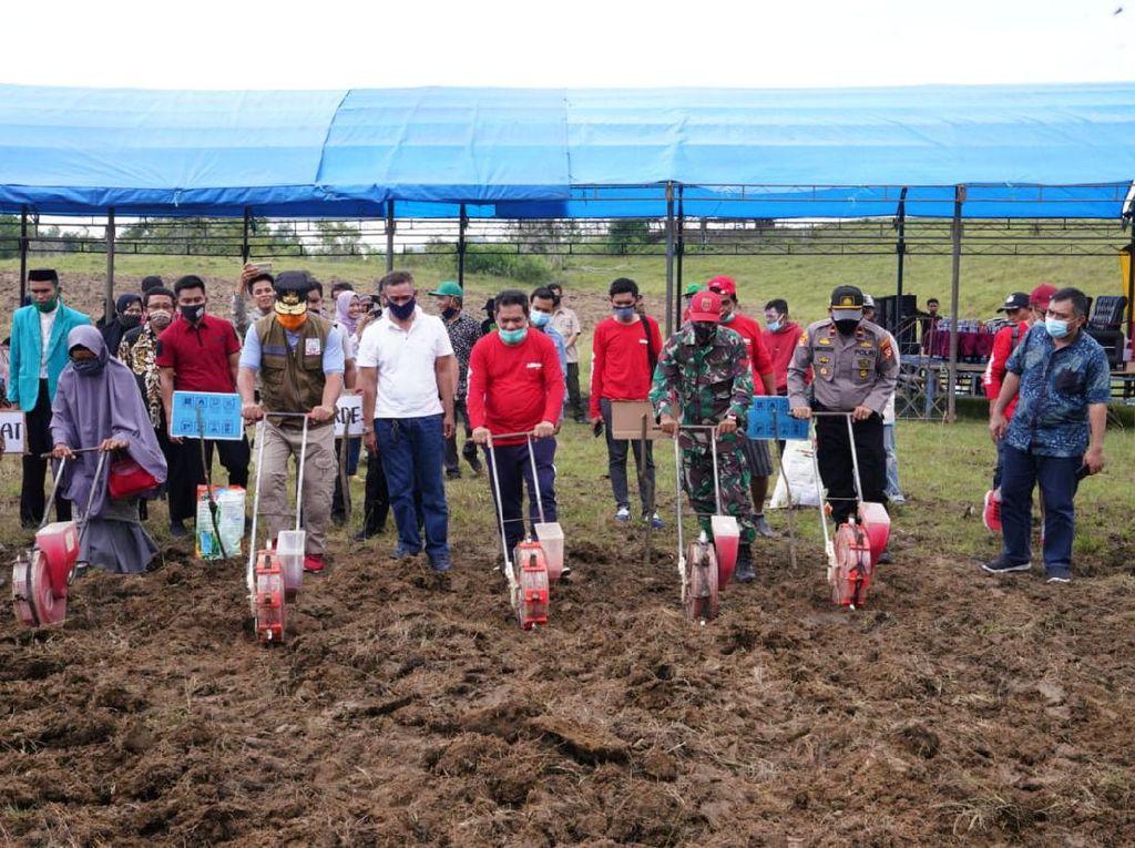 Wagub Sulsel Dorong Pemuda Kembangkan Pertanian