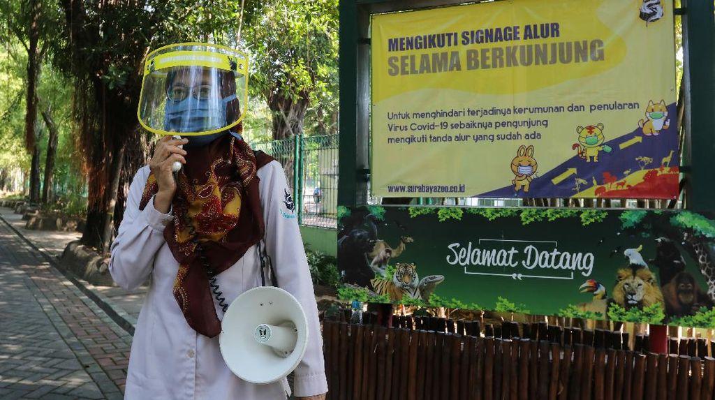Rek, Kebun Binatang Surabaya Kembali Dibuka Lho