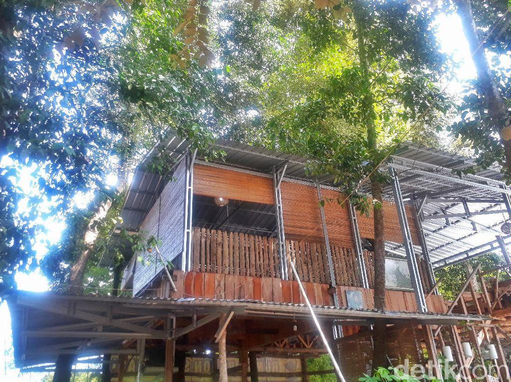 3 Tempat Nongkrong dengan View Candi di Yogyakarta