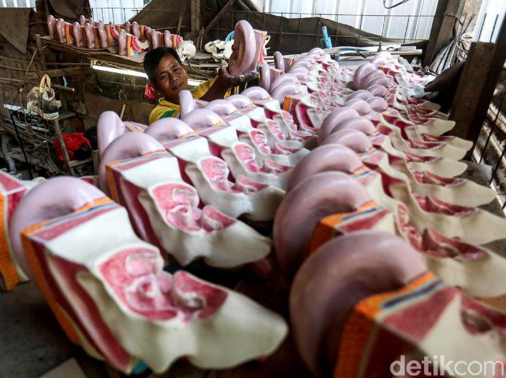 Melihat Lebih Dekat Pembuatan Manekin Anatomi Tubuh