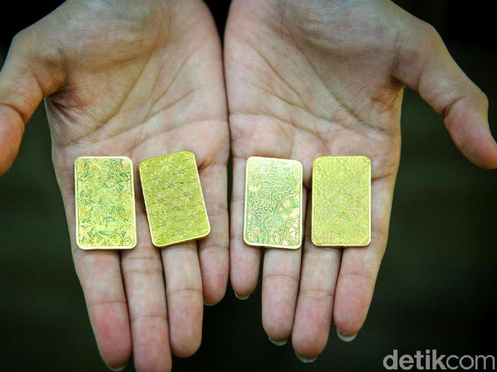 Tambang Emas di Papua Jadi Incaran Freeport dan Antam