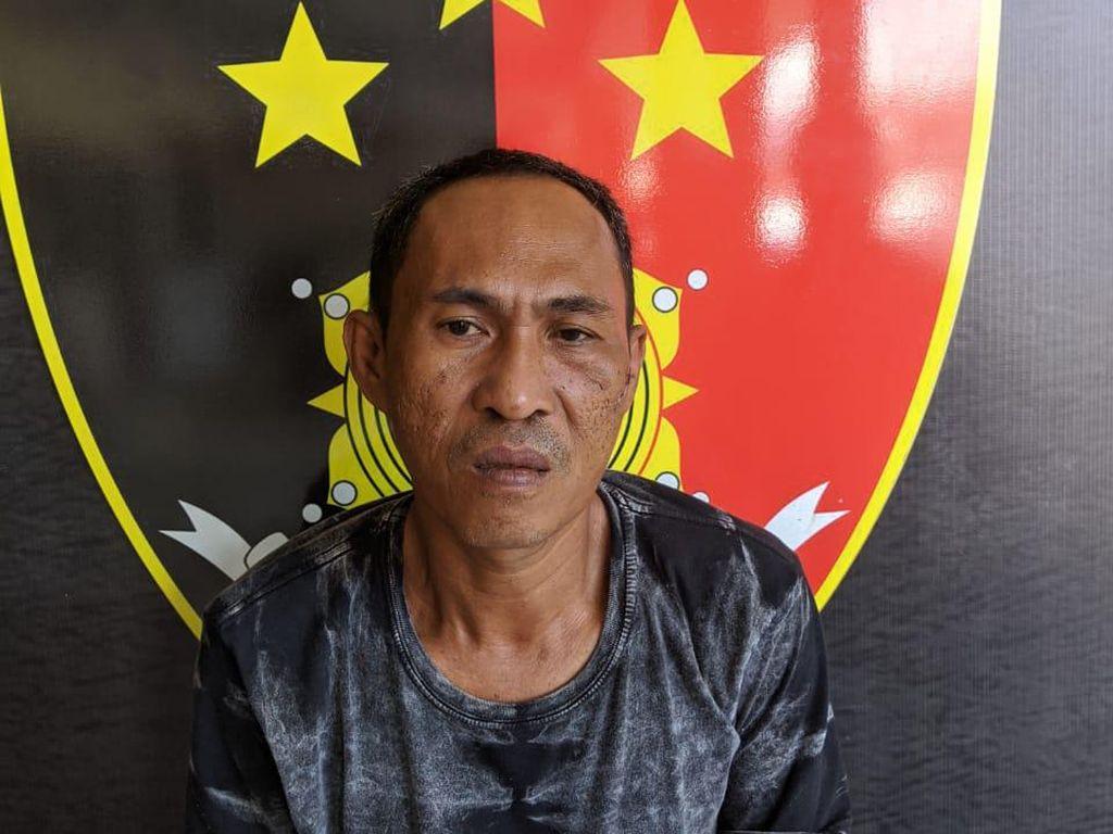 Curi 4 Ekor Sapi, Tukang Servis Elektronik di Palopo Ditangkap Polisi
