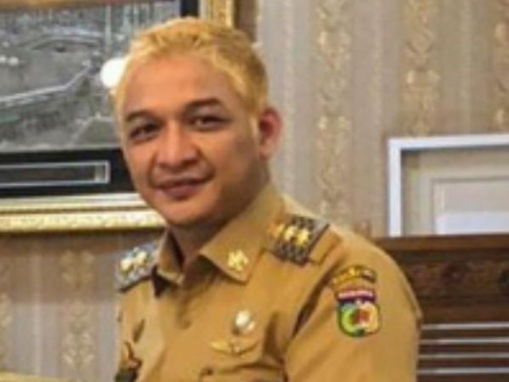 Pimpinan Komisi II DPR Anggap Rambut Pirang Pasha Selera Bergaya