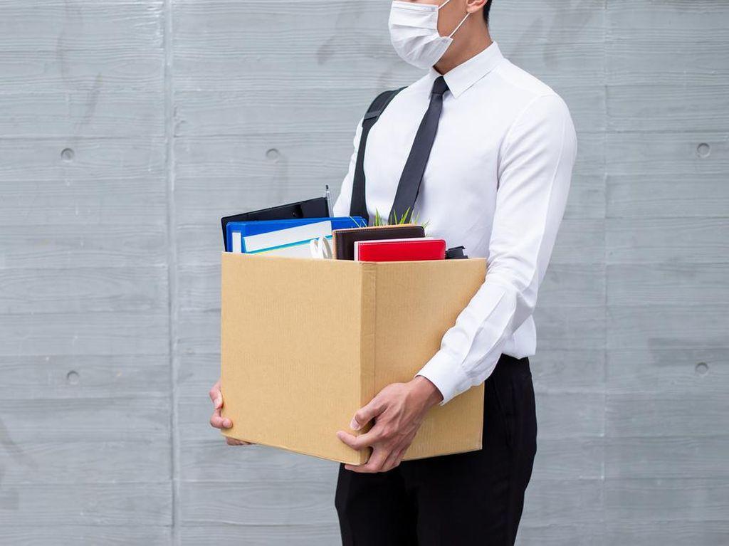 Kapan Korban PHK Dapat Jaminan Kehilangan Kerja? Ini Bocorannya