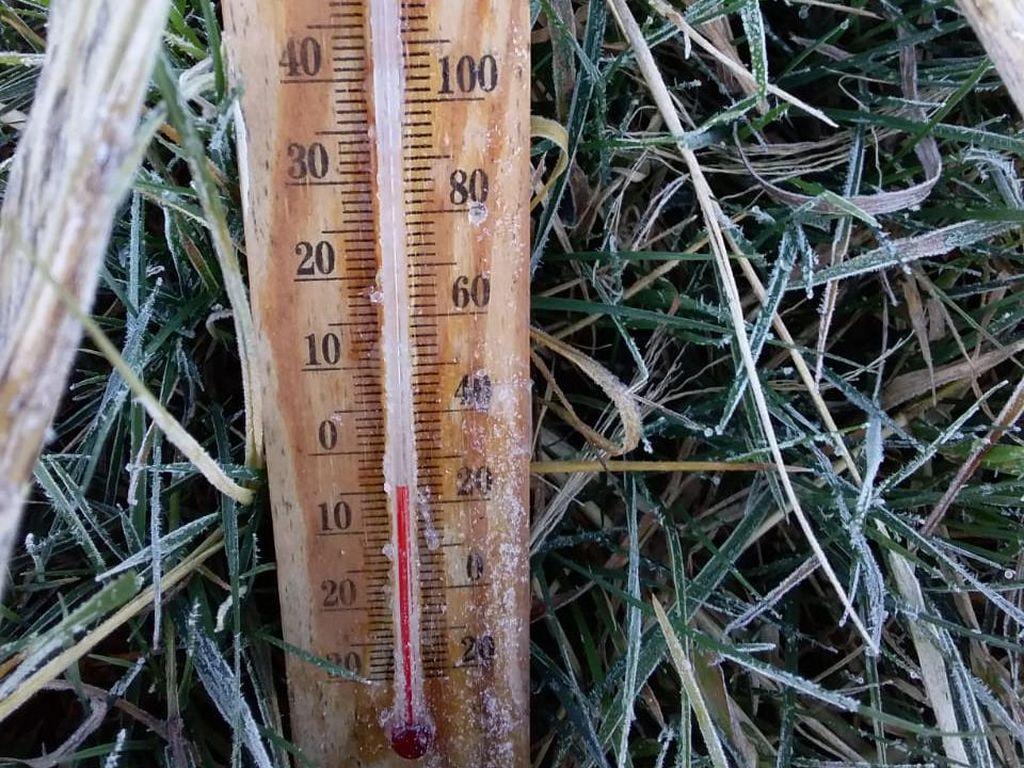 Suhu Minus 4 Derajat, Hari Ini Embun Es di Dieng Makin Luas dan Tebal