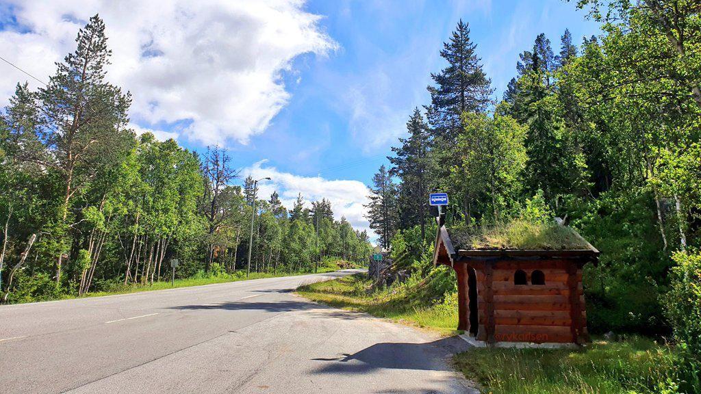 Potret Halte Bak Negeri Dongeng di Norwegia