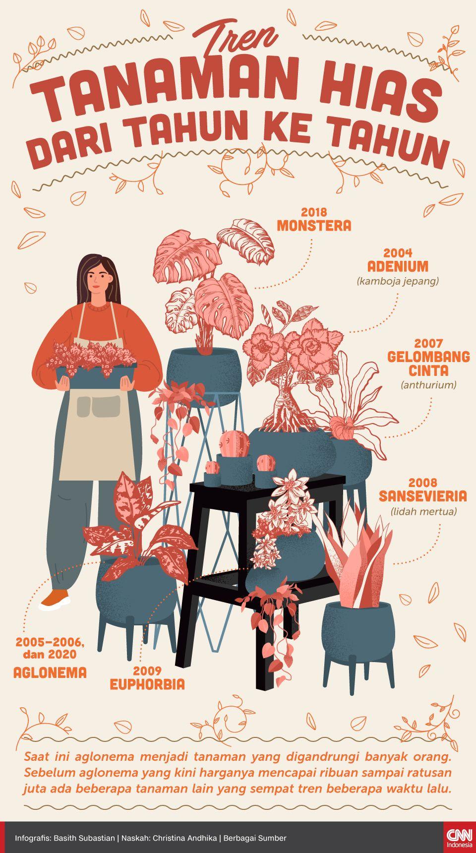 Infografis Tren Tanaman Hias dari Tahun ke Tahun