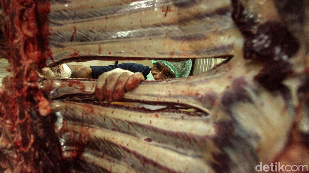 Melihat dari Dekat Pemotongan Hewan Kurban di RPH Cakung
