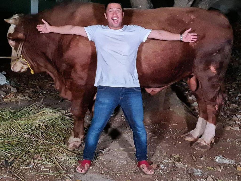 Cerita Irfan Hakim Dapat Sapi 1 Ton dan Domba Garut Gratis untuk Kurban