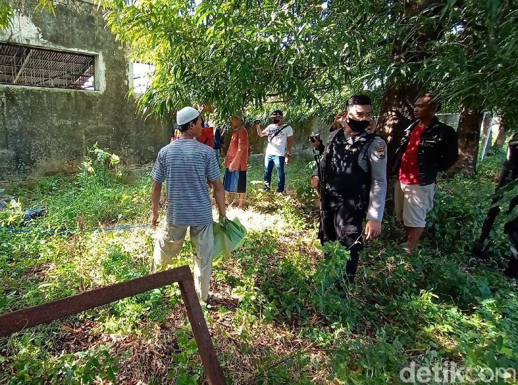 Dor! Polisi Tembak Kerbau Kurban yang Ngamuk Saat Akan Disembelih