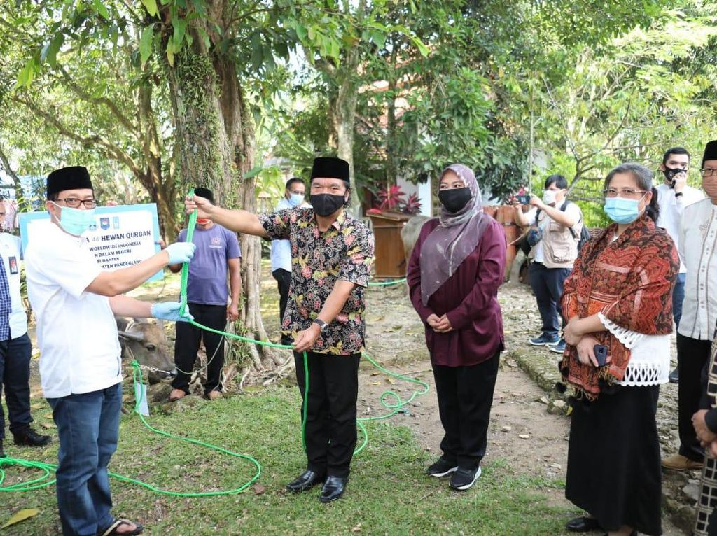 Kemendagri Salurkan Hewan Kurban ke Pandeglang Banten