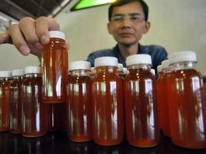 Penjelasan Resmi BPOM Soal Herbal Obat COVID-19