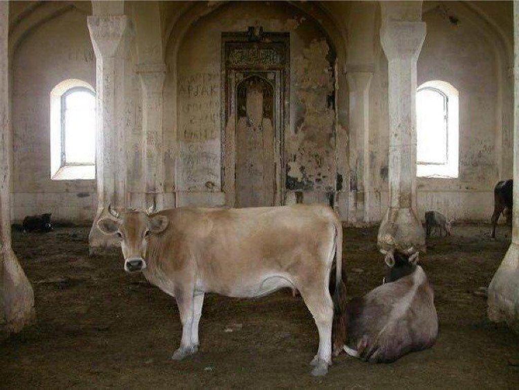 Kisah Masjid Bersejarah Azerbaijan yang Jadi Kandang Ternak
