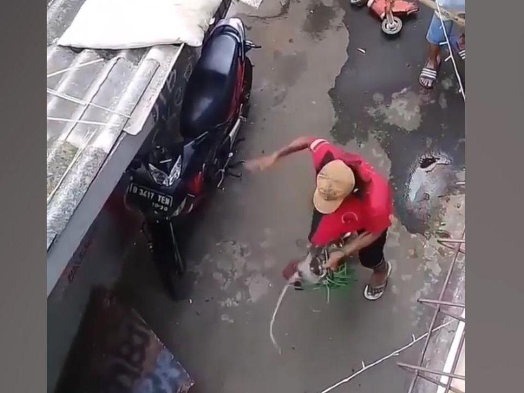 Video Monyet Dianiaya Pawang Sendiri, Satpol PP Bertindak