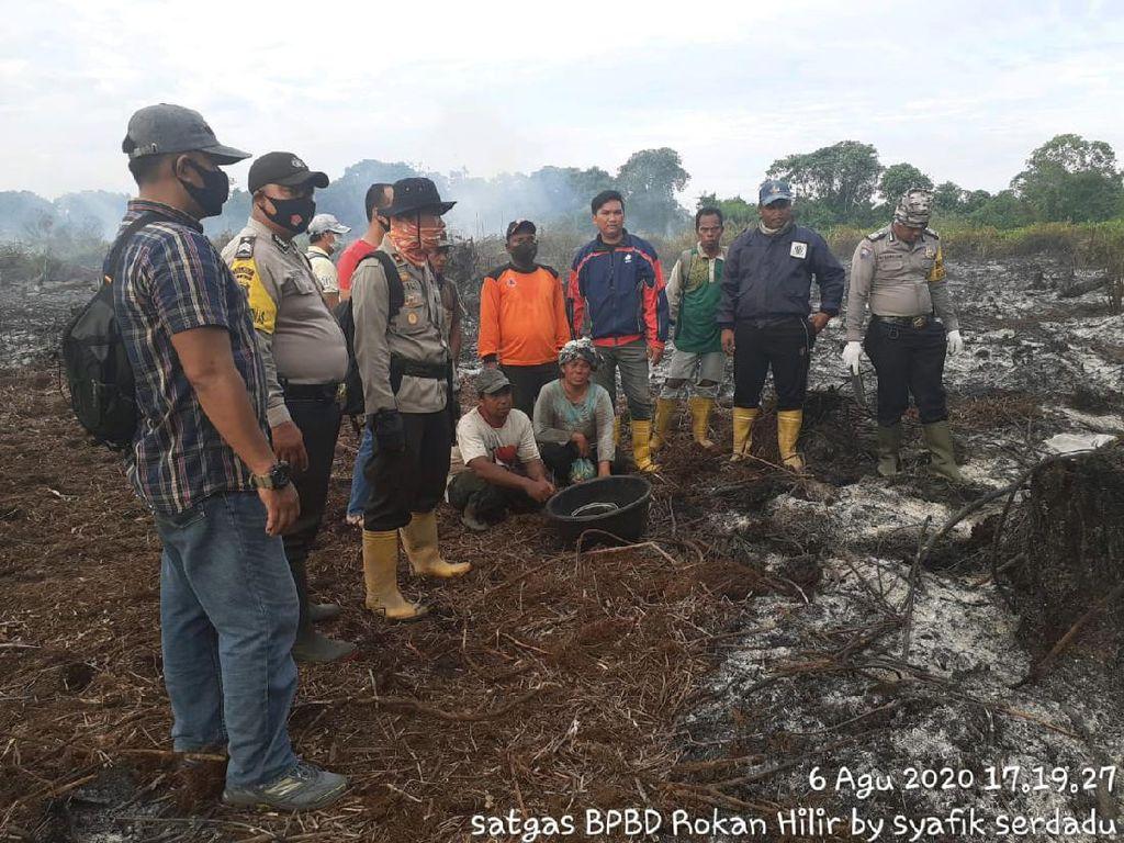 Pria di Riau Ditangkap Bakar Lahan, 1 Parang-1 Ranting Kayu Diamankan