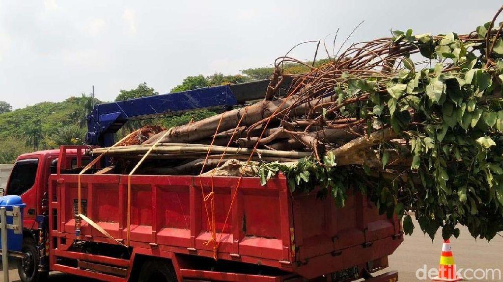 Proses Pencabutan Pohon di Lokasi Proyek MRT Fase II
