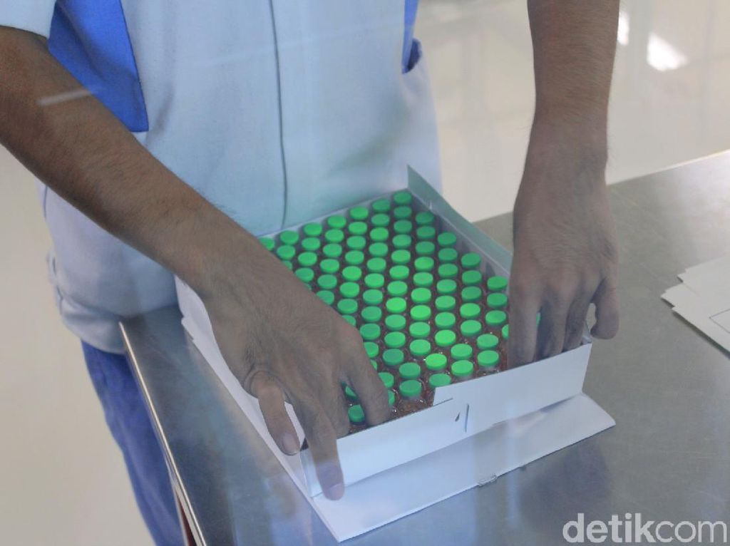 Ini Bocoran Proses Pembuatan Vaksin Corona
