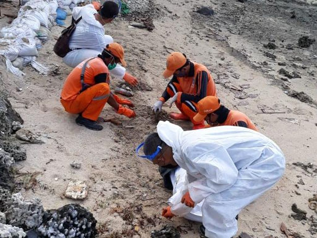 Ikut Bersih-bersih, Pertamina Cek Sumber Ceceran Minyak di Pulau Pari