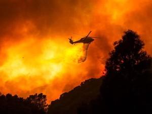 Dipicu Gelombang Panas Kebakaran Hutan di California Meluas