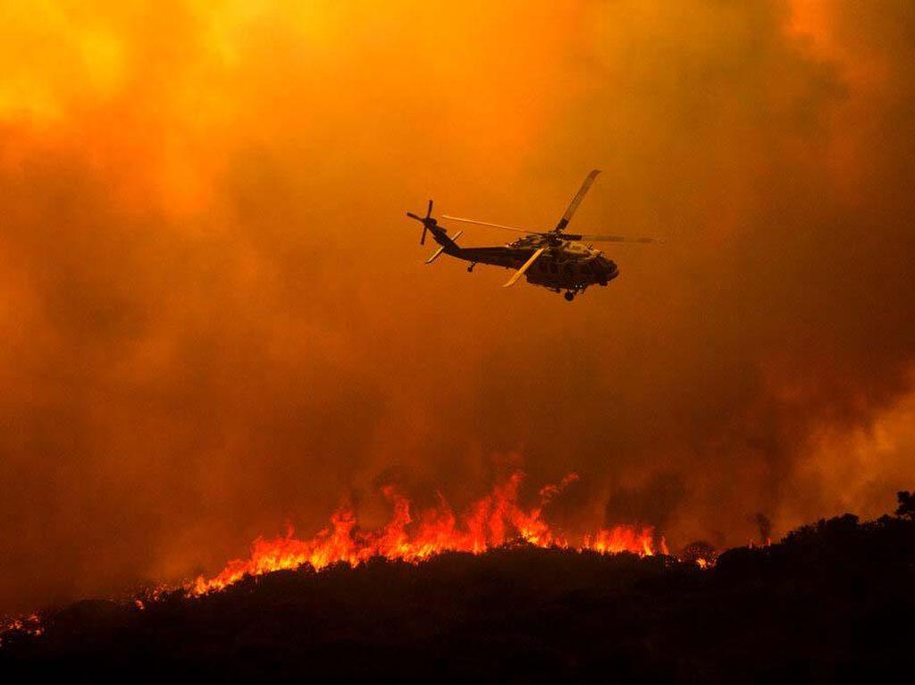 Dilanda Kebakaran Hutan, Gubernur California Minta Bantuan Internasional