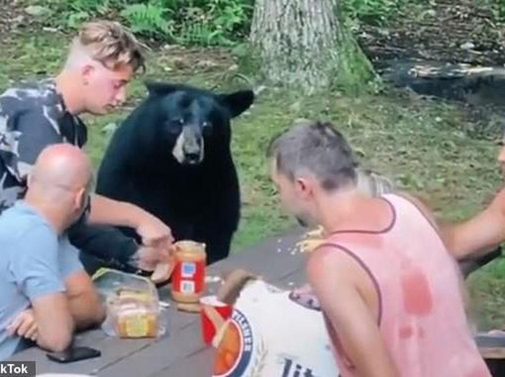 Ekstrem! Keluarga Ini Piknik dan Makan Bareng Beruang